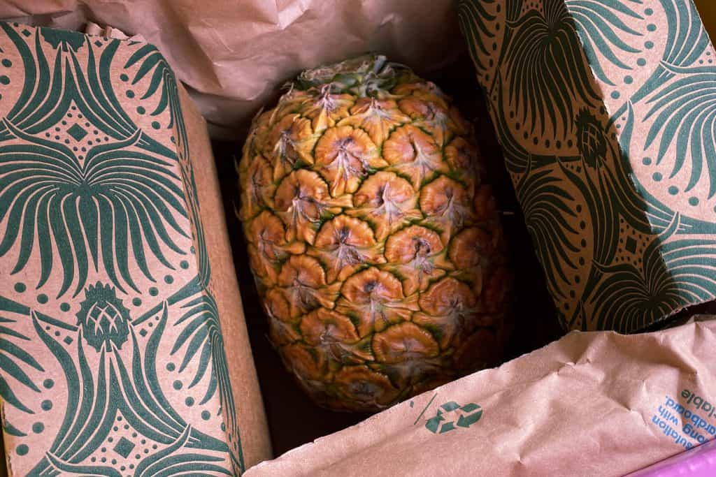 Ponk glow pineapple in its box.